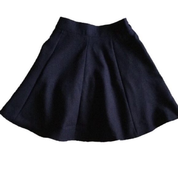 Dresses & Skirts - NWOT flare skirt